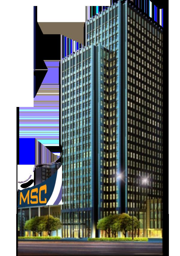 MSC consultancy.com